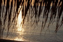 Sunrise View Through Beach Bamboo Umbrella Nea Vrasna, Greece.  Royalty Free Stock Photography