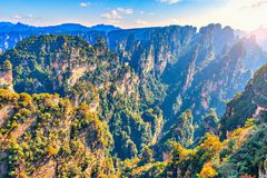 Sunrise view of the colorful cliffs in Zhangjiajie Forest Park. Stock Images