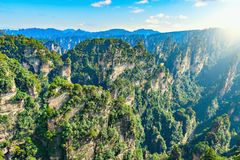 Sunrise view of the colorful cliffs in Zhangjiajie Forest Park. Royalty Free Stock Photo