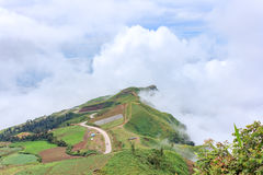 The sunrise view on morning twilight time at the top of mountain with sea of fog Phu Thap Boek Phetchabun Province Thailand Stock Image