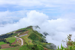 The sunrise view on morning twilight time at the top of mountain with sea of fog Phu Thap Boek Phetchabun Province Thailand Royalty Free Stock Images