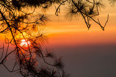 Sunrise view point , doi angkhang , chiangmai , thailand Stock Images