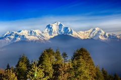 Sunrise view from Poon hill. Beautiful landscape photo of Dhaulagiri mountains from Poon hill royalty free stock image