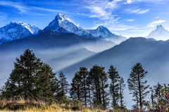 Sunrise view from Poon hill. Beautiful landscape photo of Dhaulagiri mountains from Poon hill stock photography