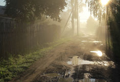 Sunrise in the village. Misty morning country road in the middle of trees Royalty Free Stock Image
