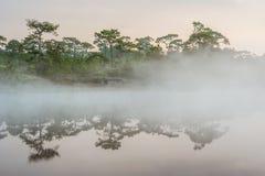 Before Sunrise at Wangkwang Reservoir Stock Images