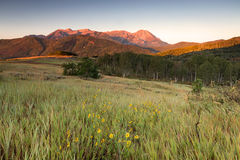 Sunrise in the Wasatch Mountains. Stock Images