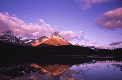 Sunrise at Waterfowl Lake in Canadian Rockies. Sunrise reflection of Mount Chephren in Waterfowl Lake, Banff National Park, Canada Stock Photos