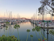 Sunrise at Westhaven Marina, Auckland, New Zealand. NZ. A tranquil view over sailing yachts and motor launches on glassy water, with the Harbour Bridge in the Royalty Free Stock Image