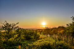 Sunrise in wild nature with mist. royalty free stock photo