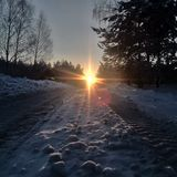 Sunrise in winner Royalty Free Stock Image