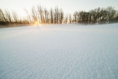 Sunrise in winter. Royalty Free Stock Photos
