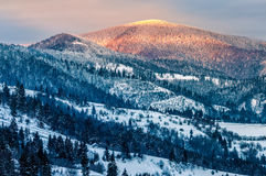 Sunrise in winter carpathians Royalty Free Stock Photography