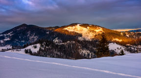 Sunrise in winter carpathians Royalty Free Stock Photography