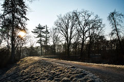 Sunrise in the winter. Frosted edge of the path Royalty Free Stock Image