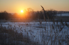 Sunrise in the winter Royalty Free Stock Images
