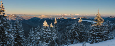 Sunrise in winter mountains - Greater Fatra, Slovakia Royalty Free Stock Photo
