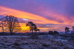 Sunrise, Winter, Snow, Dumfries Stock Image