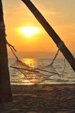 Sunrise With Hammock And Coconut Palm Trees On Tropical Beach Background Stock Image