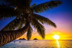 Lanikai Beach Sunrise. Sunrise from the world famous Lanikai Beach in Kailua Royalty Free Stock Photography