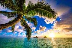 Lanikai Beach Sunrise royalty free stock photo