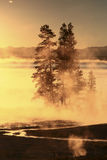 Sunrise at Yellowstone lake Royalty Free Stock Photography