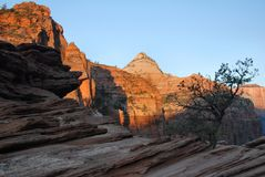 Sunrise In Zion Stock Images