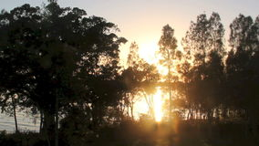 Sunrise Zoom. Zoom back from the rising sun reflecting on water through trees stock video footage