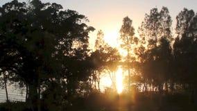 Sunrise Zoom stock video footage