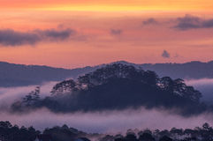 Sunrises, fog and red cloud somwhere near Dalat city - in Dalat- VietNam. Sunrises somwhere near Dalat city - in Dalat- VietNam- LamDong- VietNam stock photos