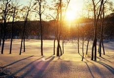 sunrising Стоковые Изображения