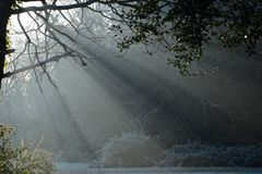 Early morning sunshine on a frosty day on Southampton Common royalty free stock images