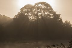 Suns rays over the Ornamental Pond, Southampton Common royalty free stock photo