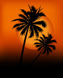 Sunset 01 Stock Image