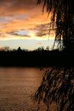 Sunset. Lake stock photography