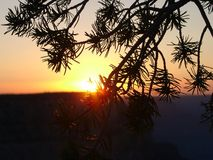 Sunset. At Grand Canyon, Arizona royalty free stock image