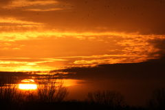 Sunset. Magic sunset up little donau Stock Photo