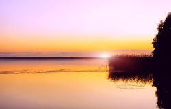 Sunset. Landscape with sunset on the lake, clouds and rush are reflected in water Royalty Free Stock Images