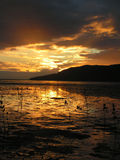 Sunset. At the Cairns-Australia Stock Photography