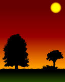 Sunset. Illustration with trees royalty free illustration