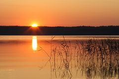 Sunset. On the lake in Lembolovo Royalty Free Stock Photo