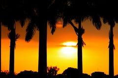 Free Sunset Stock Photography - 14958162