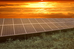 Sunset. Over solar power station Stock Image