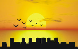 Sunset. With birds over city silhouette Stock Illustration