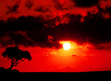 Sunset. Beautiful sunset, playing with light and shadows Royalty Free Stock Photography