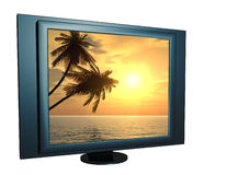 Sunset. Coconut palm trees on a computer screen - 3d illustration Stock Photo