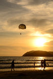 Sunset. Silhouette of a parasailor at sunset Royalty Free Stock Photo