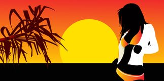 Sunset. Party beauty girl on the sun set Stock Images
