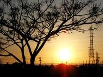 Sunset. At a river bank Stock Image
