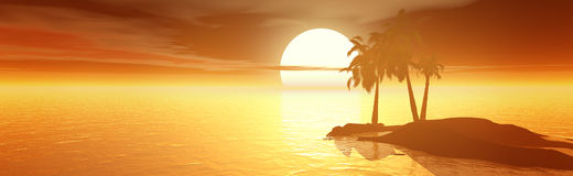 Sunset. Sea and coconut palms Royalty Free Stock Photos